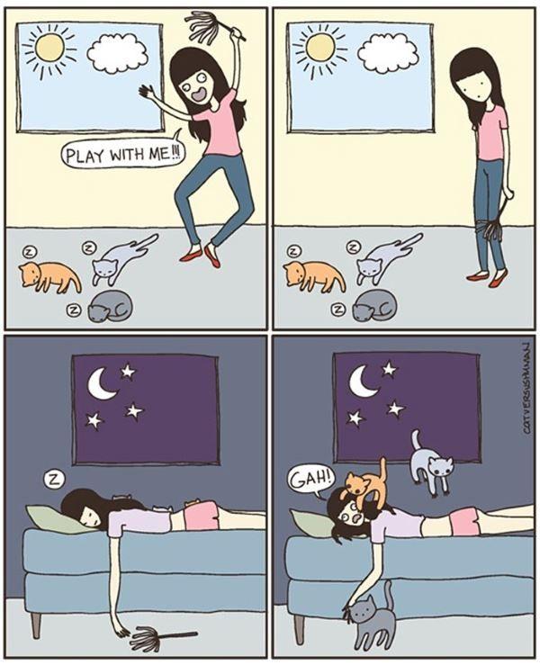 2. fumetti gatto