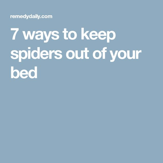 23 best the haven of your bed images on pinterest