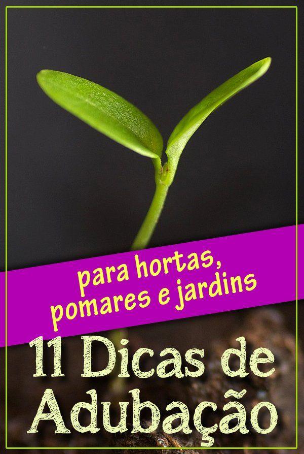 Aprenda como fertilizar suas plantas sem desperdício, cuidando da natureza e…