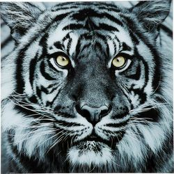 Tableau en verre Face Tiger 80x80cm