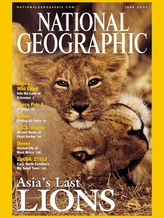 National Geographic Magazine Cover June 2001 by @mattiasklum Attended his lecture in #KansasCity http://www.mattiasklum.com/home