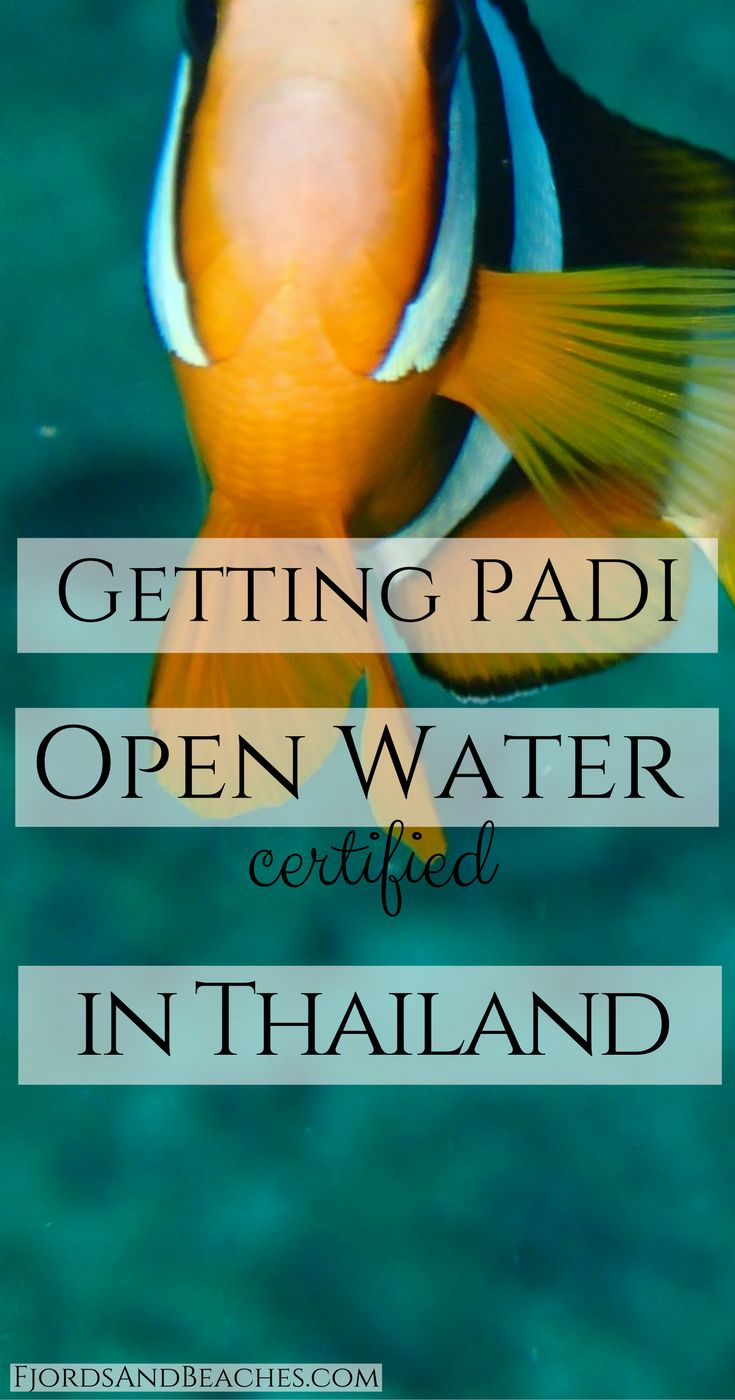 Open Water Certified, getting PADI certified. Scuba diver. Diving in Thailand.