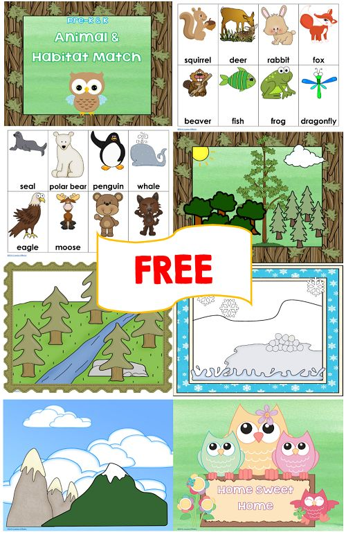 Animal and Habitat Match Free Printables Animal and Habitat Match Free Printables! This post has a two free Pre-K and K animal and habitat match printables. One has photos and one was made with clip art. I read a sweet owl board book, Home Sweet Home. It is a lift the flap and reveal story with four habitats. I thought children