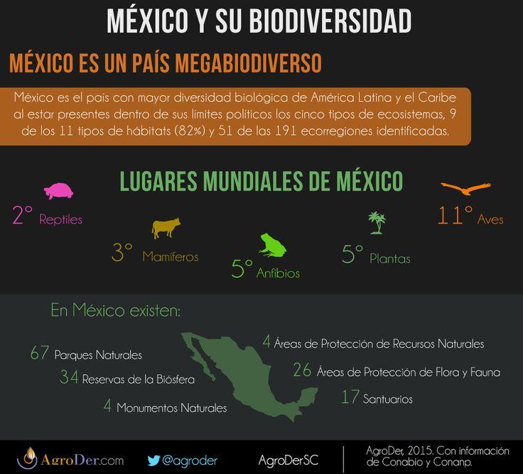 ¿Qué tanto conoces sobre #biodiversidad en México? #DiaDeLaBiodiversidad #DiaInternacionaldelaDiversidadBiologica