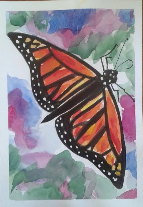 Monarch Butterfly  original watercolour painting by by MyCoveArt