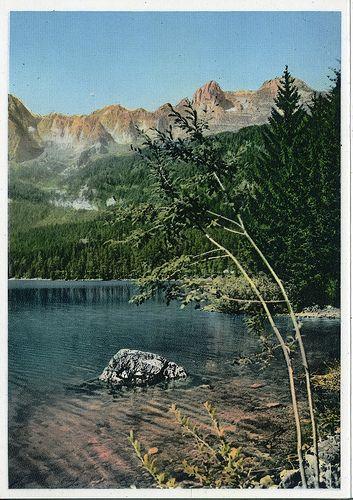 Lago di Tovel 1178 - Tuenna (Trentino)   Flickr - Photo Sharing!