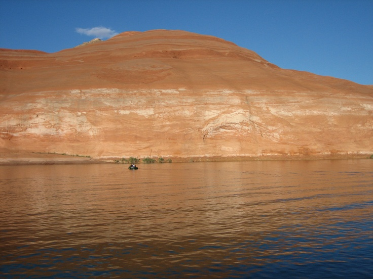 17 best images about lake powell on pinterest lakes for Lake powell fishing