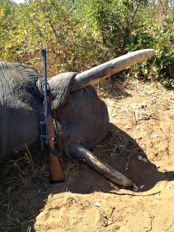 Our Clients | Ryan Breeding Rifles