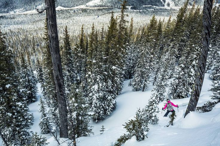 Scoping lines with Olivia the other day  this whole shoulder is a maze of pillows glades and cliffs. Definitely one of the best spots I've found! Play it safe out there this weekend if you're planning on shredding in the back country. #skitouring #backcountryskiing #earnyourturns #liveskirepeat #powdays #MountainCultureElevated #ExploreBC #powdays @backcountrymag @hellobc