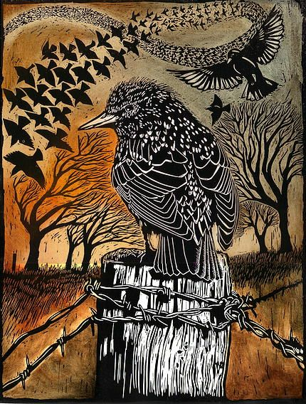 Ian MacCulloch-Artist-Printmaker