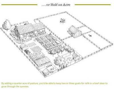 Half Acre Farm Layout Plans For Our Small Farm: 1 acre farm layout