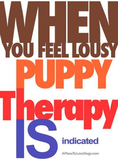 When you feel lousy Puppy Therapy is indicated  • from ... APlaceToLoveDogs.com • costume dog dogs puppy puppies cute doggy doggies funny quotes