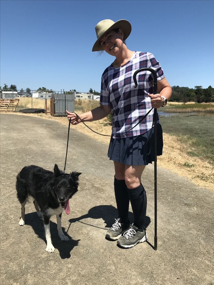 Marin County Fair Sheep Herder with her border collie