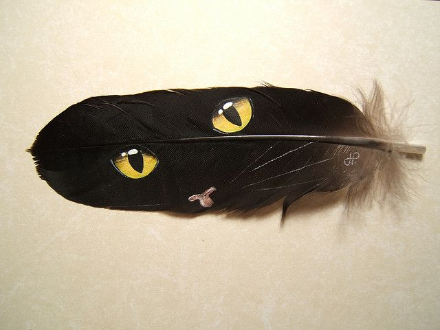 Cat eyes painted on feather  www.TelascoGallery.com Hand painted one of a kind.  Matted and framed.