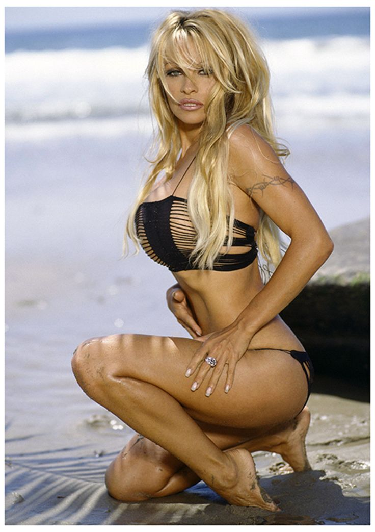 Pamela Anderson Black Net Bikini Sexy Hot Large Poster 34inx24in