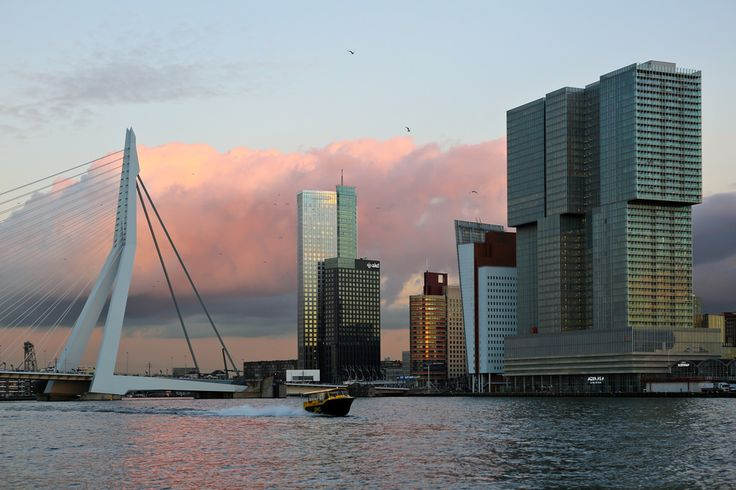 Rotterdam's quintessential sunset view, with The Rotterdam, the Erasmus bridge, and a watertaxi.