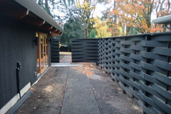 Bamboo Fence Diy Backyard Privacy