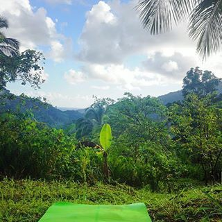 Goodmorning from the yoga mat at #BeyondVitality #Dominica