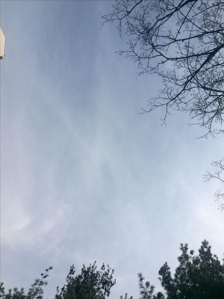 2017년 4월 3일의 하늘 #sky #cloud