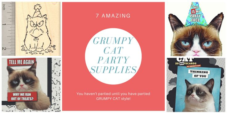 7 Grumpy Cat party Supplies