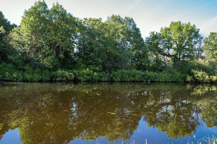 Concours de pêche, Levroux, Étang communal des Orbidas, Dimanche 10 Juillet 2016, 9h00 > 18h30