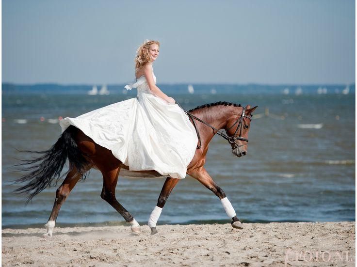 Bruidsfoto, bruidsfotograaf, www. cfoto.nl, trouwen, trouwfoto's, trouwfoto, bruidsfoto's. Wedding, bruidsfoto met paard, trouwfoto met paard, trouwen paard