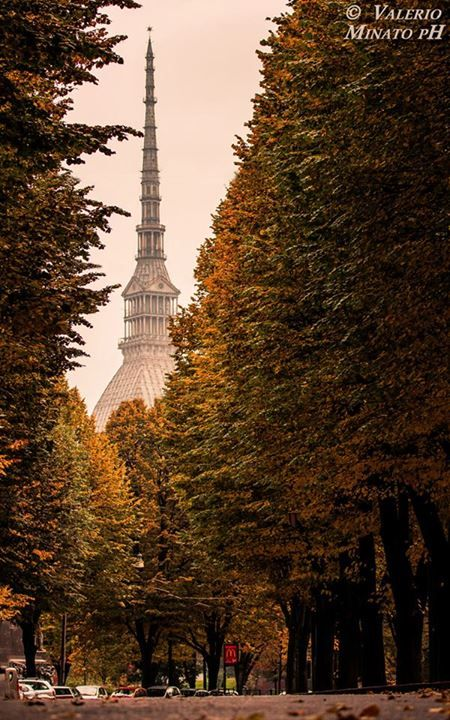 Autumn in Turin (by Valerio Minato pH)