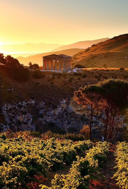 #Sunset at #Segesta, just 15 minutes from  #Trapani, #Sicily www.bebtrapanigranveliero.it