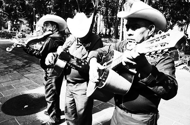 This picture is taken in Coyoacán not far from Frida Kahlos and Diego Riveras house.     #coyoacan #fridakahlo #diegorivera #bnw_photography #streets_vision #bnw_sniper #streetphotography_mexico #cdmx #peopleinframe #ricohgr #ricohgr2 #blackandwhiteisworththefight #bnw_diamond #bnw_city_streetlife #bnw_of_our_world #bnwsplash_flair #bnw_kings #bnw_drama #bnw_just #bnw_zone #streettogether #citykillersz #igersmexico #citygrammers #streetxstory #streetphotographers #lensculturestreets…