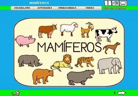 A ESCOLA DE BARCIELA: OS ANIMAIS MAMÍFEROS (Lim)
