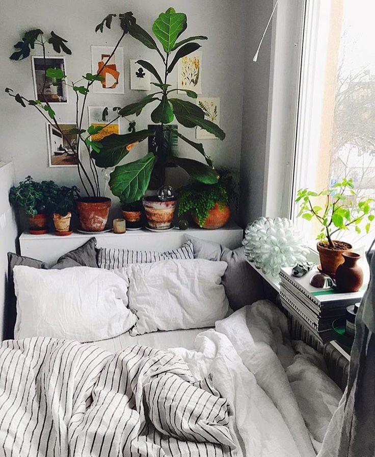Platz Für Mensch Und Pflanze. Gemütlich Schlafen Und Lesen. Bett Mit  Aussicht.