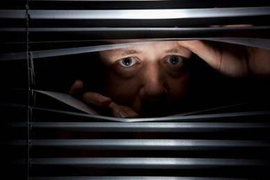 paranoia - Google Search