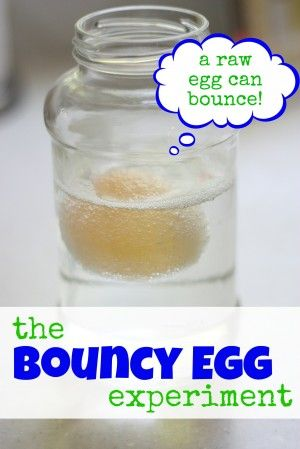 The Bouncy Egg Did this with Emma, but only waited 24 hours.  The egg bounced a little but broke pretty quickly.  Am going to try it again and wait 3 days.  Definitely bounce this outside.