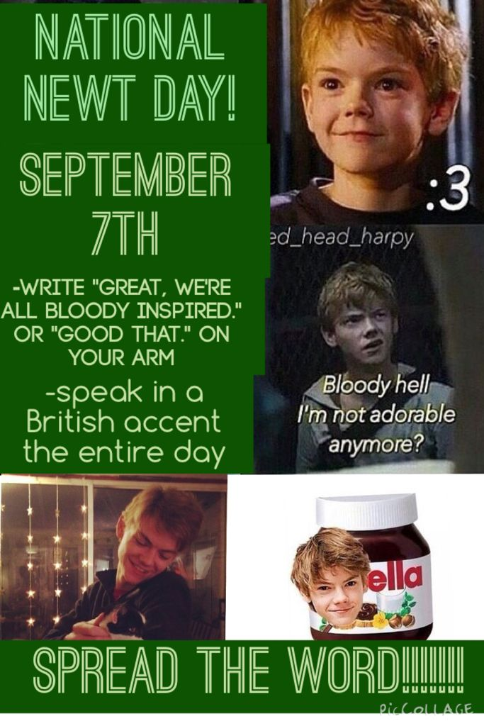 SPREAD THE WORD FOR NAT. NEWT DAY! SEPTEMBER 7TH CAUSE THATS THE 250TH DAY OF THE YEAR! I heard about this and it is a great idea and I'd love to get some of my maze runner fandom fangirl friends to help me with this! Spread the word! I want to see somebody else talking in a British accent this day! Repin it! Like it! Share it! WE WILL AVENGE NEWT! ❤️ #newtday