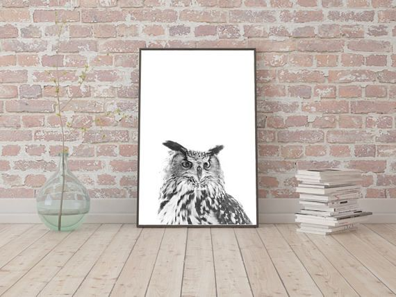 Check out this item in my Etsy shop https://www.etsy.com/listing/520920928/digital-image-owl