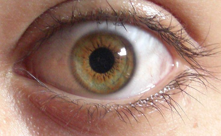 best 25 yeux marron vert ideas on pinterest maquillage. Black Bedroom Furniture Sets. Home Design Ideas