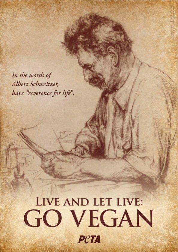 Live & Let Live <3