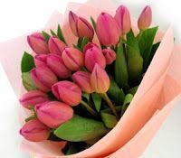 Bunga Tulip Untuk Kado Cinta | Toko Bunga by Florist Jakarta