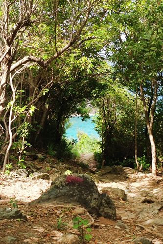 Hands down, my favorite discovery on St. Bart's was the 40-minute hike to Le Colombier beach -arriving at this pack a good lunch, as the warm waves and Lost-like flora will keep you here all day long. Thanks to preservation and local conservation activists like Hélène Bernier, St. Bart's has lots of lush, undiscovered hikes and reserves. Bernier arranges tours of the island and knows a side of St. Bart's beauty that far eclipses its showy rep.  Colombier Beach