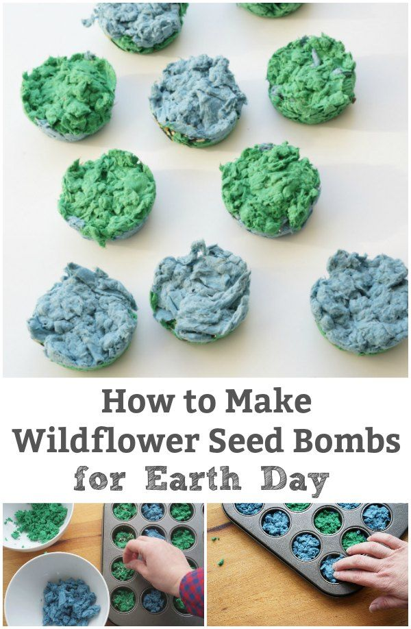 How to Make Seed Bombs For Earth Day – readcountcraft.com
