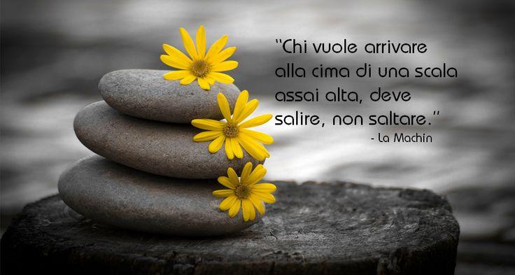 #frasi #aforismi #zen #immagini #benessere