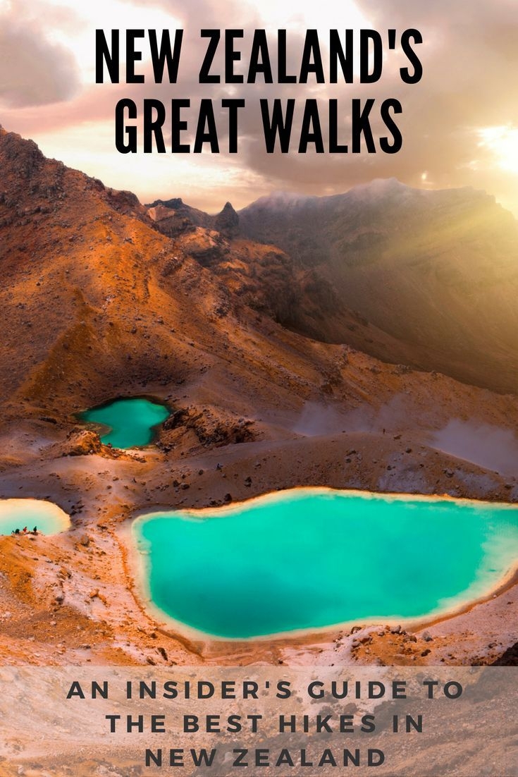An Insider's Guide to New Zealand's Best Hikes – Great Walks NZ