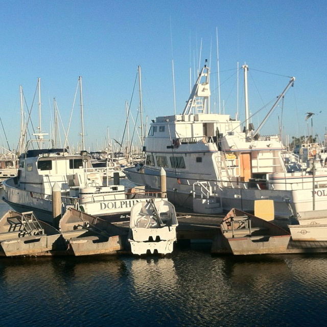 17 best images about la jolla san diego on pinterest for La jolla fishing