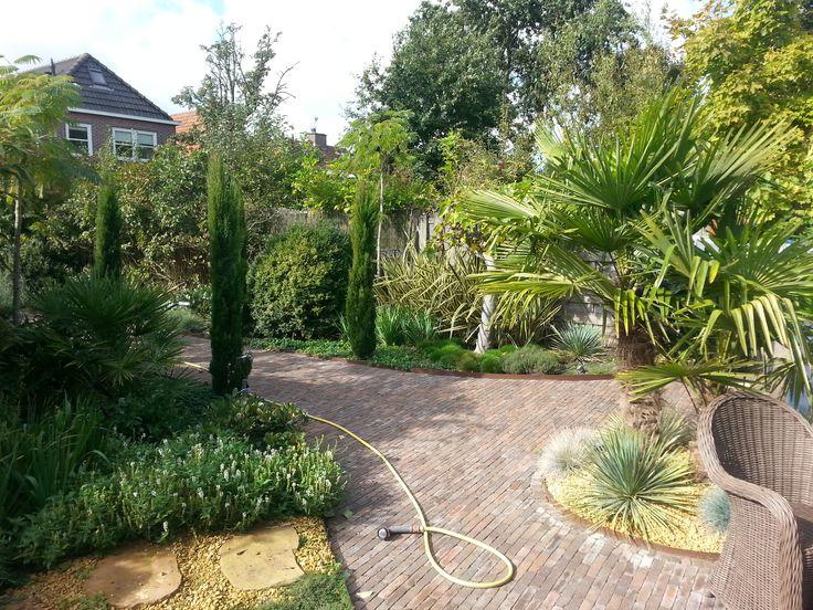 De mediterraanse stijl wordt in veel tuinen in Nederland geadopteerd. Benieuwd naar hoe je een mediterraanse tuin kan realiseren? Kijk op TuinTuin.nl voor inspiratie.