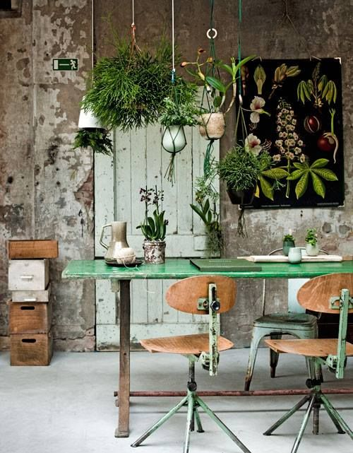 Outdoors in. Dining room with hanging plants, macrame, green dining table, rustic dining room, urban jungle