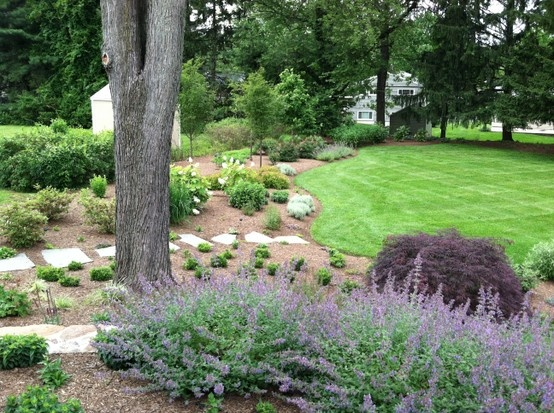 Landscaping Under Elm Trees : About garden under tree on gardens trees and yard ideas