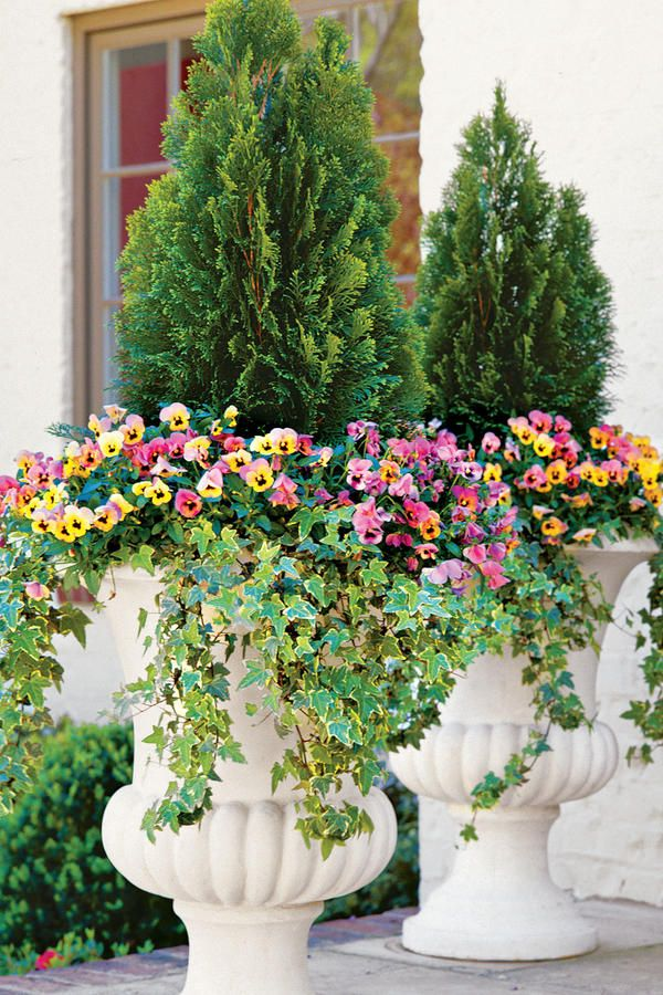 1000+ Ideas About Fall Container Gardening On Pinterest