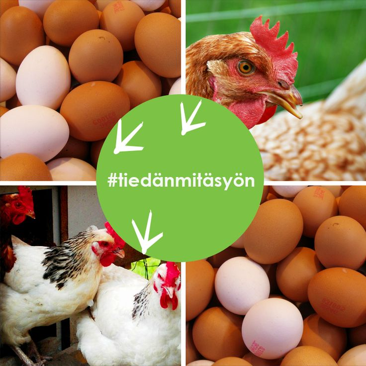 Kananmunia myydään lukuisilla eri kauppanimillä ja brändeillä. Kanojen olosuhteiden perusteella tuotantotapoja on neljä erilaista, ja kullakin tuotantotavalla tuotettuja munia myydään – usein harhaanjohtavastikin - monenlaisilla nimillä. Kuluttajan opas auttaa vertailemaan eri tuotantotapoja ja kanojen hyvinvointia niissä.