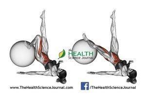 © Sasham | Dreamstime.com - Fitball exercising. Extension of one leg on fitball. Female
