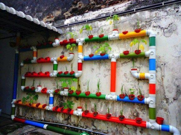マレーシアの土管式菜園.jpg